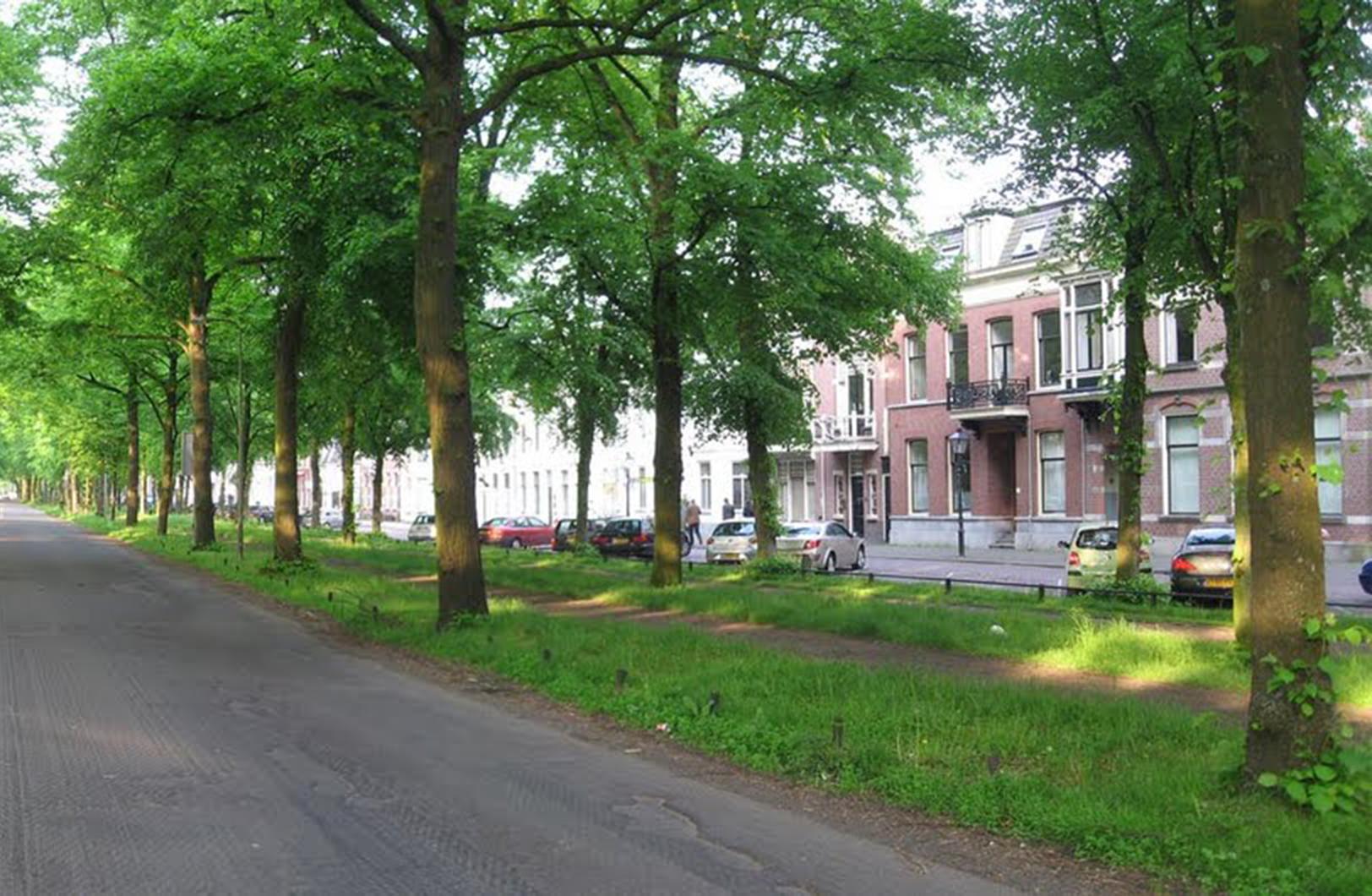 Utrecht Maliebaan panorama 5